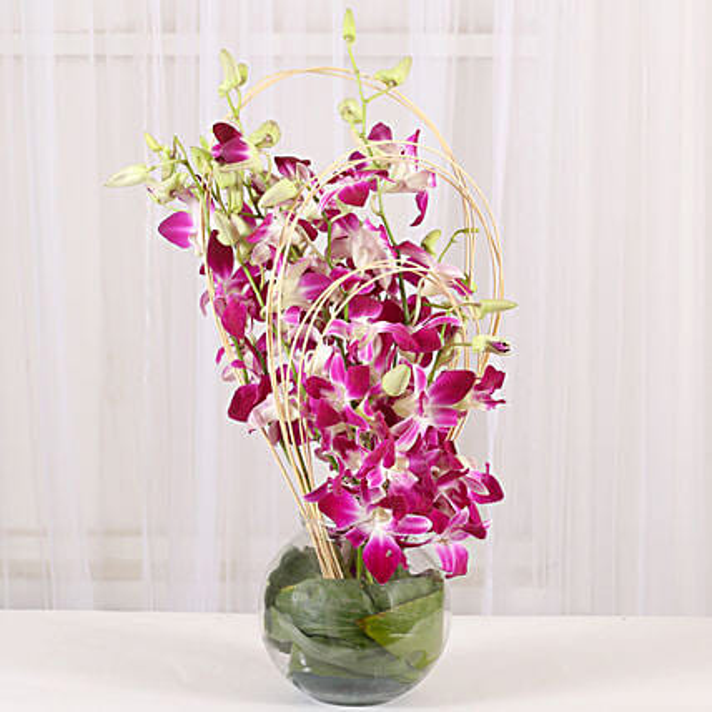 Blue Orchids Vase Arrangement Gift Elegant Orchids Online Ferns
