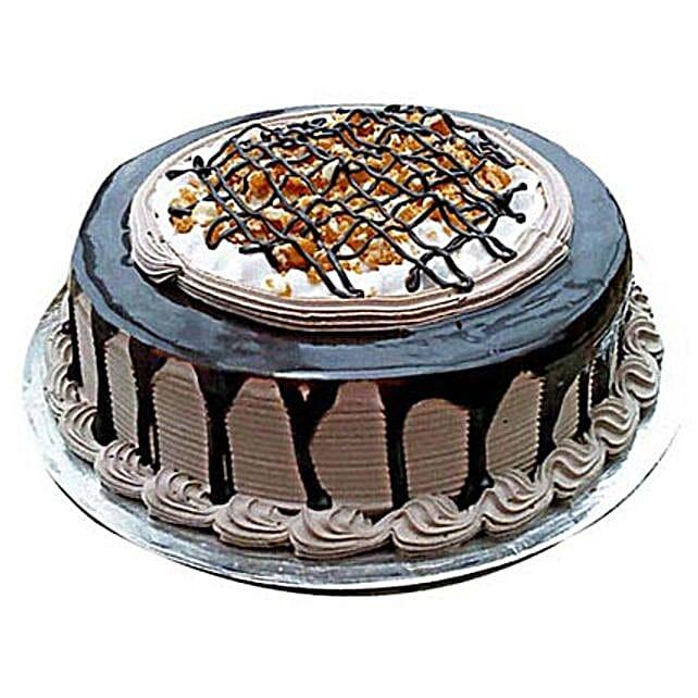 Chocolate Nova Cake 1kg Eggless