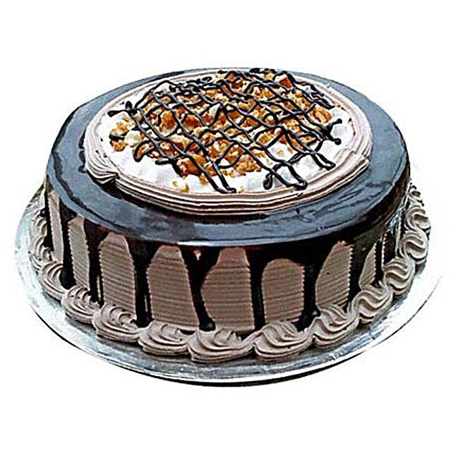 Chocolate Nova Cake 2kg Eggless