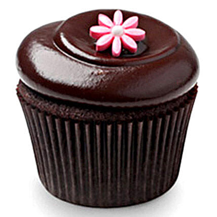 Chocolate Squared Cupcakes 6 Eggless