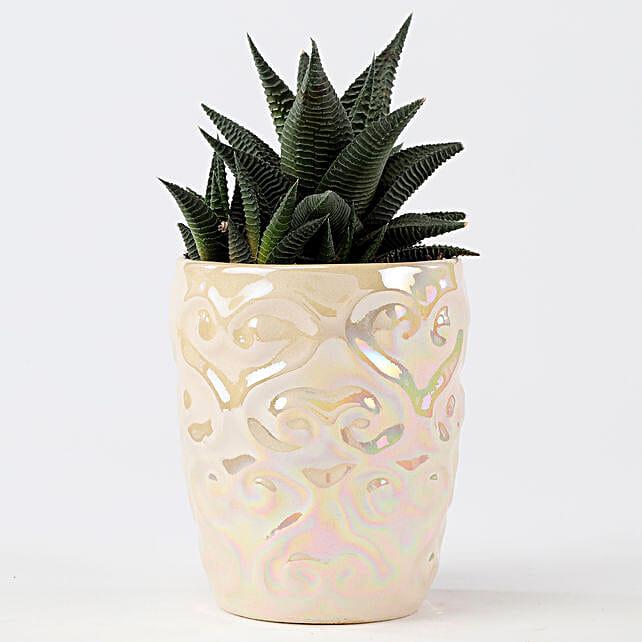 Metallic Finish Ceramic Pot