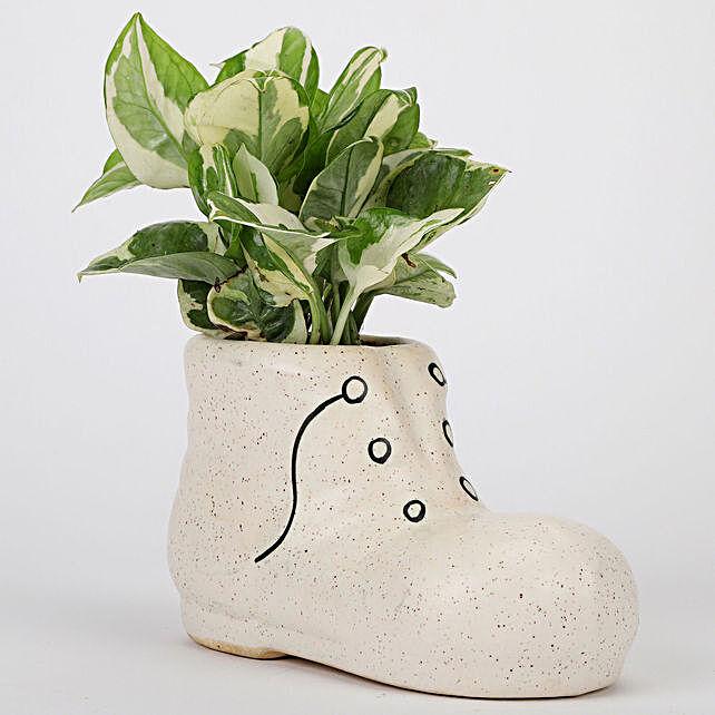 Shoe Shaped Ceramic POt