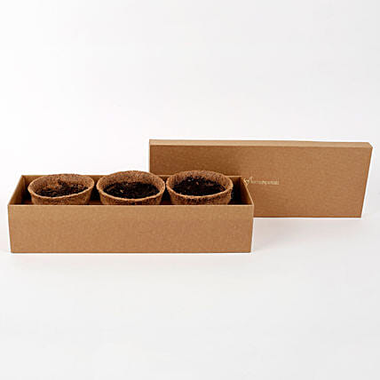 Self Growing Plants Kit with Coir Pots