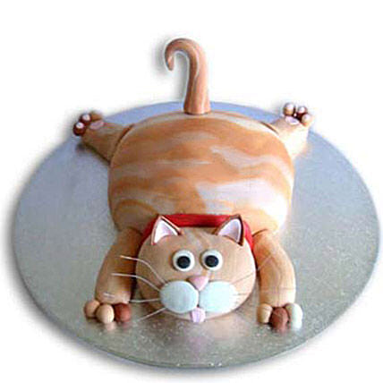 Tabby Cat Cake 4Kg Eggless Chocolate