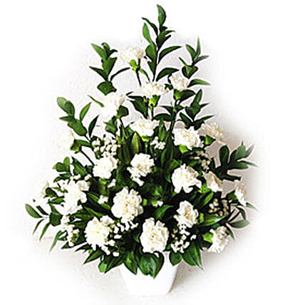 White Carnations In A Vase