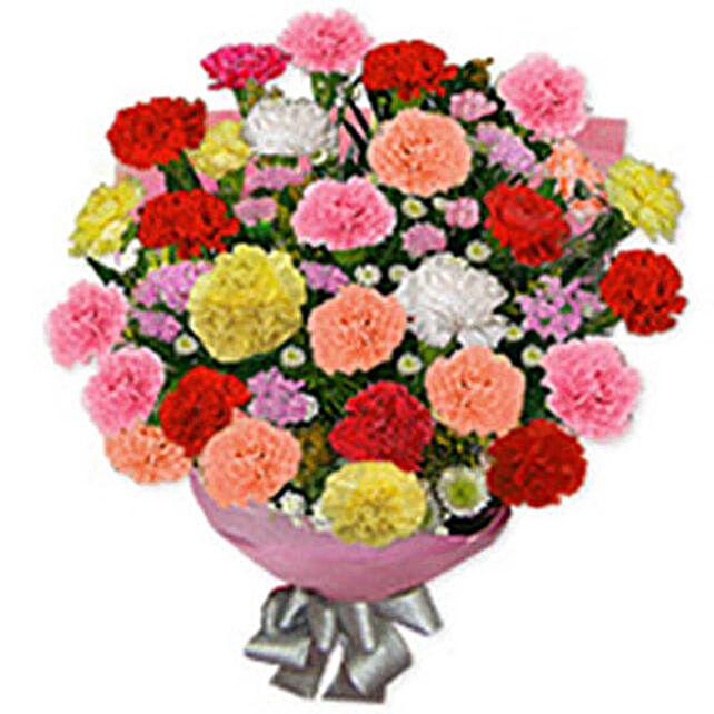 Carnation Carnival qat