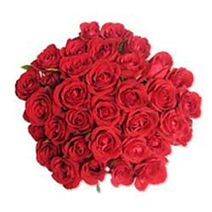 12 Red Roses in Cellophane SA