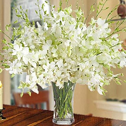 40 White Orchid Arrangement