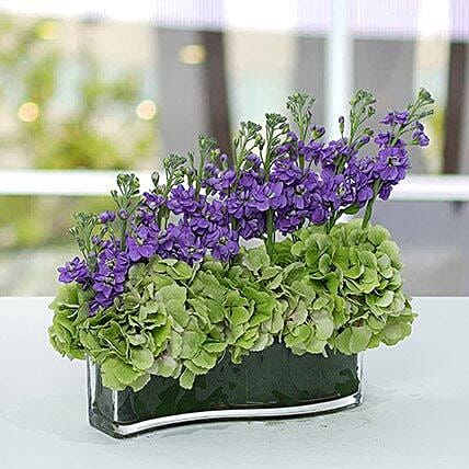 Attractive Hydrangea And Stock Flowers Arrangemnet