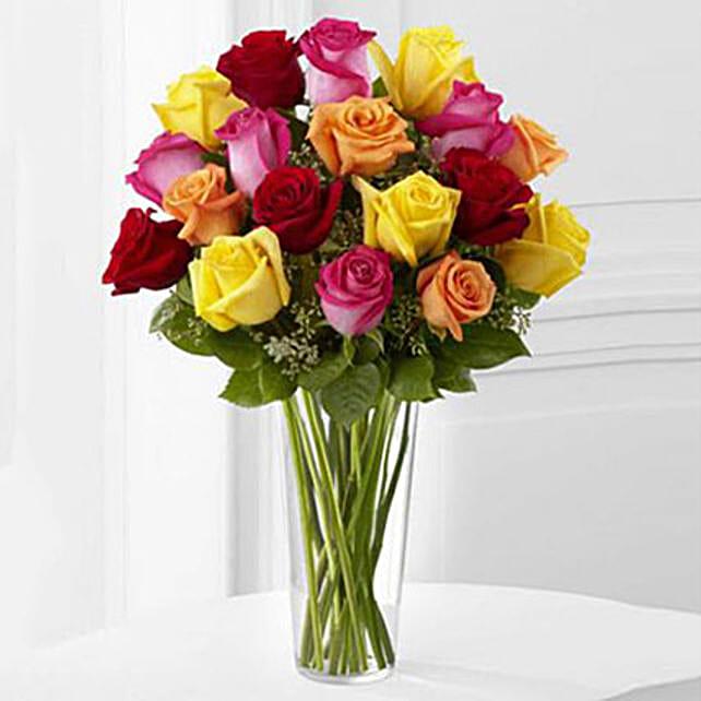 18 Bright Spark Roses
