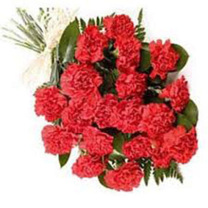 20 Red Carnations